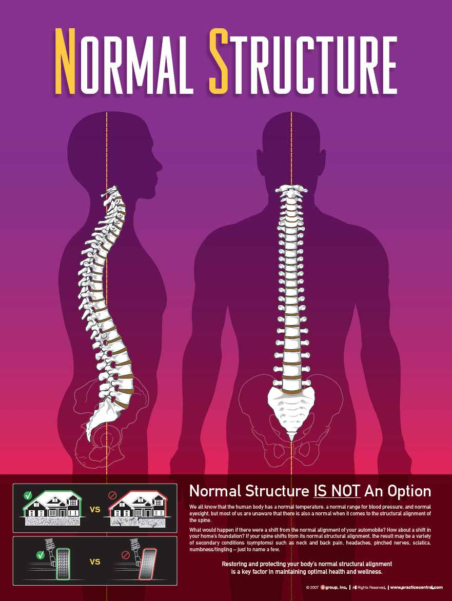 Chiropractic Kapolei HI Normal Structure Graphic